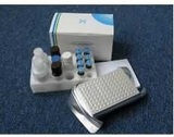 小鼠N-乙酰基-丝氨酰-天门冬酰-赖氨酰-脯氨酸(AcSDKP)ELISA试剂盒